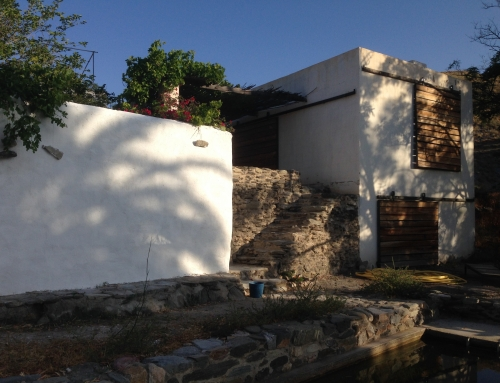 Sanierung Mauer Kirchhof